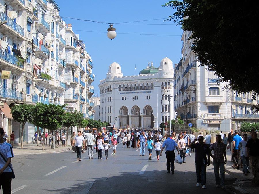 Algiers-generators-PERINGENGENERATORS-3