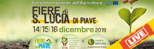 LIVE: PERINGENERATORS at International Agricultural Exhibition  (Santa Lucia di Piave-TV)