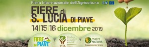 14-16 December: PERINGENERATORS GROUP at International Agricultural Exhibition  (Santa Lucia di Piave – ITALY)